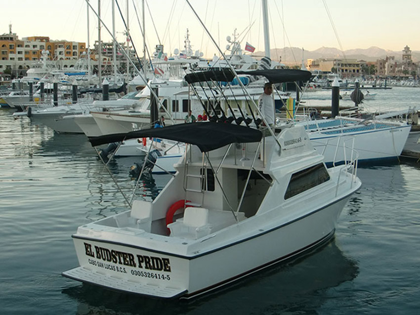Cabo san lucas sport fishing charter boat selection el for Cabo san lucas fishing charters