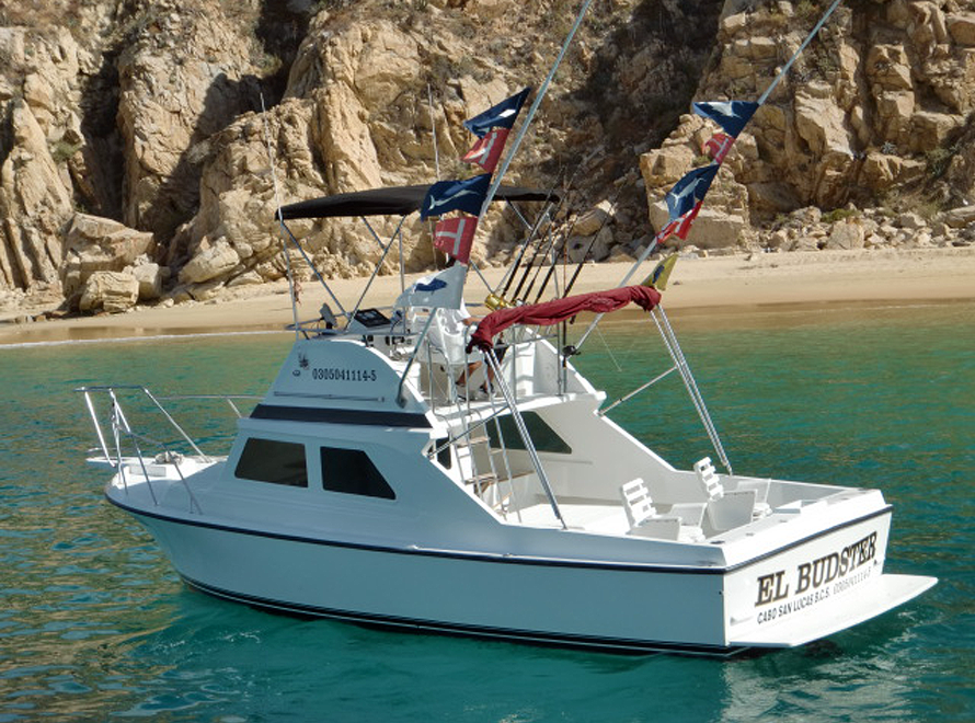 Cabo fishing charters boats for Cabo san lucas fishing charters