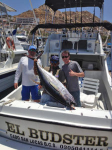 Yellowfin Tuna fished in Cabo San Lucas on 7/8/16