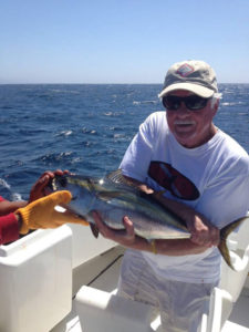 Yellowfin Tuna caught off the coast of Cabo San Lucas 6/26/16