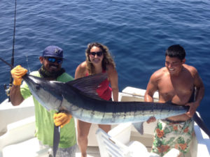Striped Marlin fished in Cabo San Lucas on 7/17/16