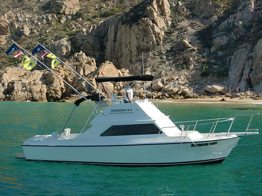 Cabo fishing charters boats for Fishing cabo san lucas