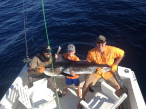 Striped Marlin fished in Cabo San Lucas on 8/1/16