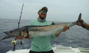 Wahoo fished in Cabo San Lucas on 8/8/16