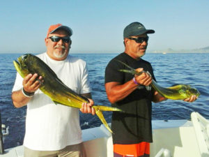 Dorado fished in Cabo on 9/10/16