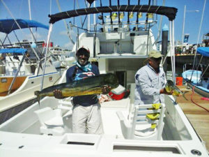 DORADO fished in Cabo on 10/05/16