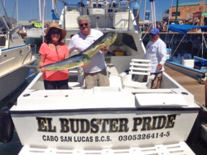 Yellowfin Tuna fished in Cabo on 10/06/16