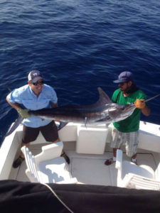 120 lb. Striped Marlin fished in Cabo on 9/1/16
