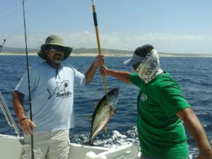 10 lb. Yellowfin Tuna fished in Cabo on 9/8/16