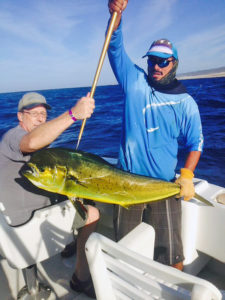 DORADO fished in Cabo on 11/01/16