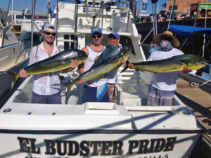 DORADO fished in Cabo on 11/15/16