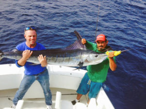 Striped Marlin fished in Cabo San Lucas on 11/30/16