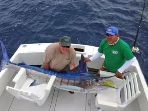 Striped Marlin fished in Cabo San Lucas on 12/03/16