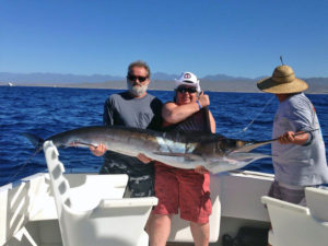 Striped Marlin fished in Cabo San Lucas on 12/06/16