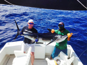 Striped Marlin fished in Cabo on 11/23/16