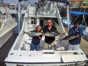 Yellowfin Tuna fished in Cabo San Lucas on 1/275/17