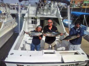 Yellowfin Tuna fished in Cabo San Lucas on 1/275/17