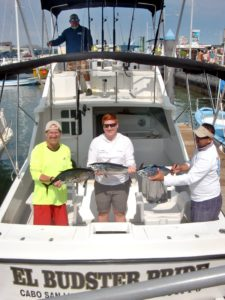 Skipjack fished in Cabo San Lucas on 3/04/17