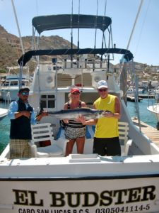 Wahoo fished in Cabo San Lucas on 3/05/17