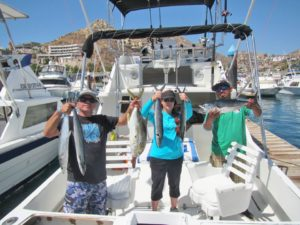 Sierra Mackerel fished in Cabo San Lucas on 5/2/17