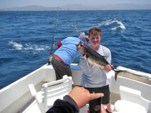 Yellowfin Tuna fished in Cabo San Lucas on 6/8/17