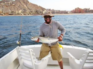 Sierra Mackerel fished in Cabo San Lucas on 6/21/17