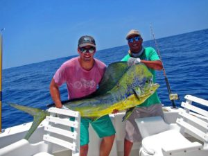 Dorado fished in Cabo San Lucas on 7/25/17