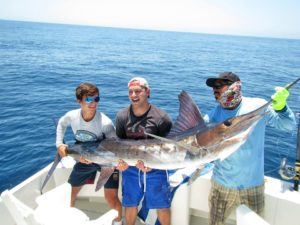 Striped Marlin fished in Cabo San Lucas on 7/15/17