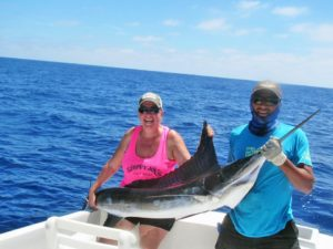 Striped Marlin fished in Cabo San Lucas on 9/18/17