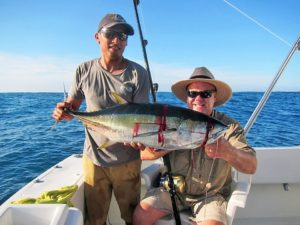 Yellowfin Tuna fished in Cabo San Lucas on 9/14/17