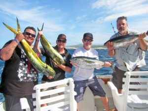 Yellowfin Tuna fished in Cabo San Lucas on 9/23/17