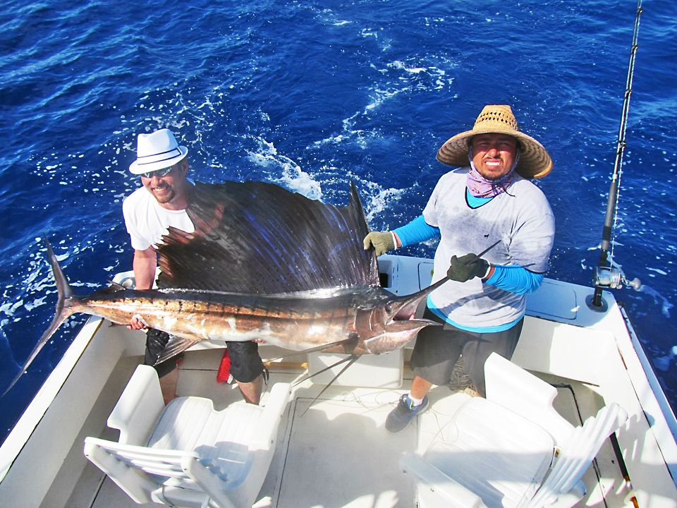 Fishing guides cabo san lucas picante magbay outfitters for Cabo san lucas fishing report