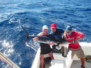 Striped Marlin fished in Cabo San Lucas on 11/13/18