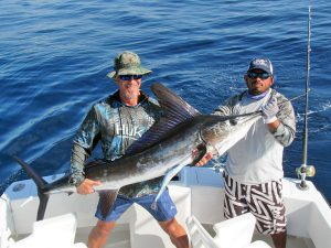 Striped Marlin fished in Cabo San Lucas on 1/10/19