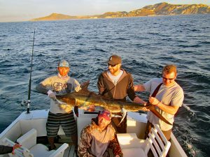 Striped Marlin fished in Cabo San Lucas on 2/12/19