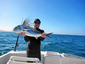 Roosterfish fished in Cabo San Lucas on 3/04/19