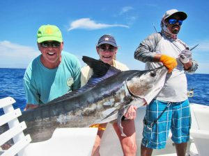 Striped Marlin fished in Cabo San Lucas on 3/09/19