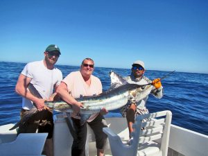 Striped Marlin fished in Cabo San Lucas on 3/22/19