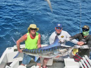 Striped Marlin fished in Cabo San Lucas on 4/04/19