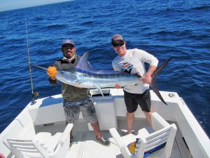 Striped Marlin fished in Cabo San Lucas on 4/30/19