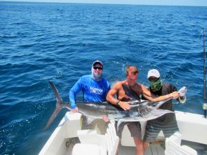 Striped Marlin fished in Cabo San Lucas on 5/07/19