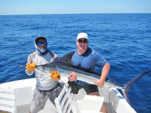 Striped Marlin fished in Cabo San Lucas on 5/17/19