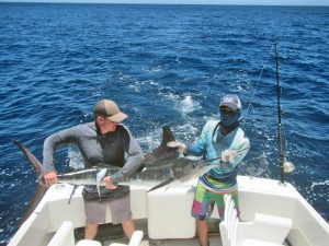 Striped Marlin fished in Cabo San Lucas on 7/24/19