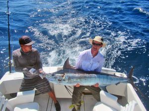 Blue Marlin fished in Cabo San Lucas on 8/17/19