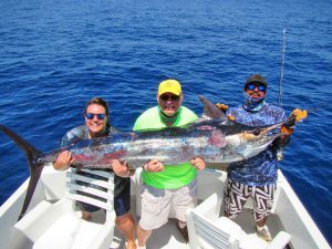 Blue Marlin fished in Cabo San Lucas on 8/21/19