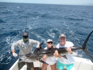 Striped Marlin fished in Cabo San Lucas on 8/07/19