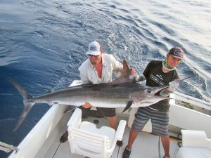 Striped Marlin fished in Cabo San Lucas on 8/20/19