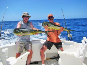 Dorado fished in Cabo San Lucas on 9/9/19