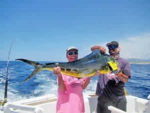 Dorado fished in Cabo San Lucas on 9/14/19