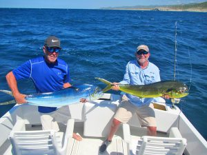Dorado fished in Cabo San Lucas on 9/26/19